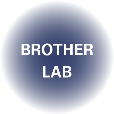 BROTHER LAB